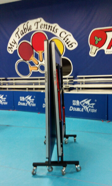 Double Fish Ping Pong Table 201s V 15mm Training