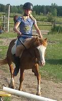Amazing Pony