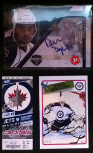 Winnipeg Jets Stars & Manitoba Moose Prospect Hockey Cards