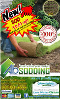 SOD ABsodding - 89 cents - include sod and installation -no wait