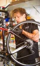 REID Extended Service Offer with any REID bicycle purchase Coorparoo Brisbane South East Preview