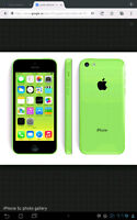 Lost Green IPhone 5c