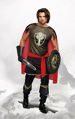King of Swords Costume for Men Size Large Medieval Warrior New by Dreamgirl 9405