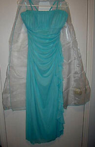 Dress/Gown-Shawl:waist 30-32 inches:LikeNEW/Corsage/Earrings