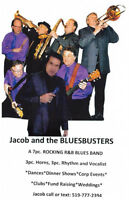 Jacob and the BLUESBUSTERS Band