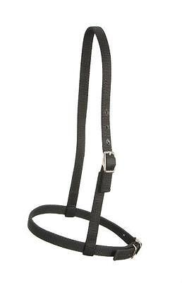 Black 2 Ply Nylon Full Horse English Saddle Hunt Seat CAVESON Bridle Noseband