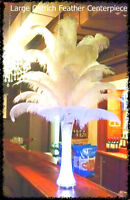 Feather Centerpiece Rentals for Special Events