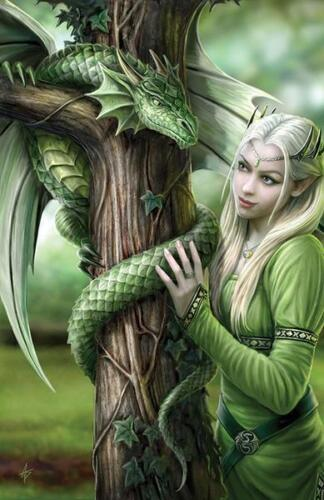 Kindred Spirits Dragon Greeting Card Anne Stokes Elf Maiden with Dragon