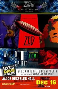 Zed - The Led Zeppelin Experience  / Wild T And The Spirt  Cambridge Kitchener Area image 1