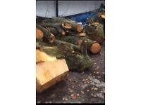 Free logs in Bury