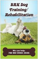 BRK Dog Training/ Rehabilitation