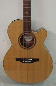 takamine g series 6 string electric acoustic guitar esg 45sc ebay. Black Bedroom Furniture Sets. Home Design Ideas