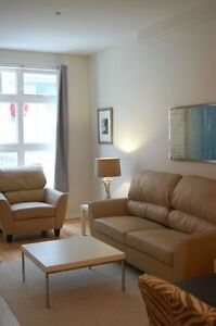 JAN 1ST -  MODERN FURNISHED DOWNTOWN CONDO - EVERYTHING INCLUDED