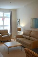 MODERN FURNISHED DOWNTOWN CONDO - AVAIL OCT 1ST