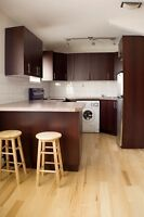 FURNISHED STUDIO APARTMENT DOWNTOWN - WIFI/CABLE INCLUDED