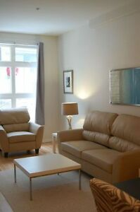 MODERN FURNISHED DOWNTOWN CONDO - AVAIL DEC 1ST