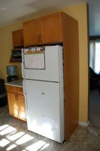 Kitchen cupboard cabinets and counters for sale - NEW PRICE Stratford Kitchener Area image 1