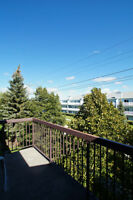 WELL MAINTAINED 2 BEDROOM CONDO!!