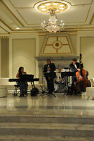 Live music for corporate/private party during the holidays  2014