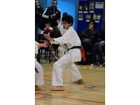 Holywood Kids Karate