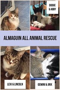 Almaguin All Animal Rescue