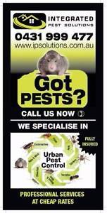 INTEGRATED PEST SOLUTIONS Hawthorn Boroondara Area Preview
