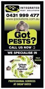 INTEGRATED PEST SOLUTIONS Laverton Wyndham Area Preview
