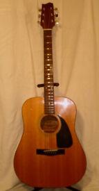 Vintage Fender Gemini 2 Guitar
