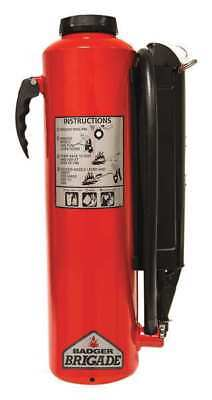 Fire Extinguisher, 80B:C, Purple K, 20 lb. BADGER B-20-PK for sale  USA