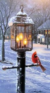 Warmth-of-Winter-Cardinal-Print-by-Darrell-Bush-7-75-x-14-Signed