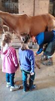 Donaldson Ranch - Adult and Child Cowboy/Cowgirl Riding Camp