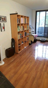 Looking for sublet 1 BR starting on january 2019