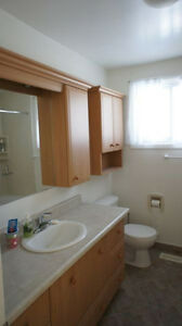 Room for rent in home near UW and Accelerator Centre Kitchener / Waterloo Kitchener Area image 5