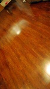 Excellent cleaning for your home or office.  Kingston Kingston Area image 1