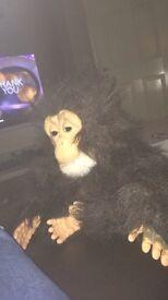 Furreal friends cuddly chimp