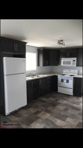 New 1 bedroom apartment St. John's Newfoundland image 1