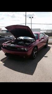 2010 Dodge Challenger SRT8 Furious Fuschia Numbered 005/400