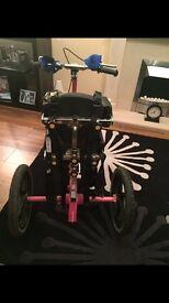 Special needs trike