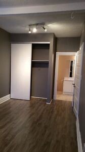 Charming Apartment for Rent in Down Town Galt Cambridge Kitchener Area image 10