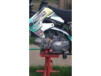 Daytona Anima 2v pit bike engine!