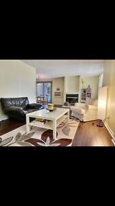 Griffintown sunny spacious 4 1/2 for sale