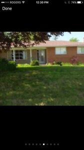 A place to call home - New Dundee Kitchener / Waterloo Kitchener Area image 7