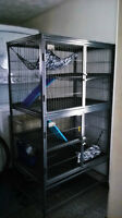 Animal/Critter Cage