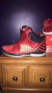 Addidas basketball shoes           Trade or cash  Windsor Region Ontario image 1