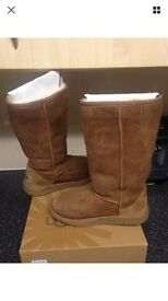 Authentic UGG Tall Classic