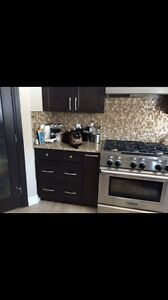 Kitchen aid professional gas range for trade or cash