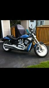 2005 Harley Vrod..      Mint!