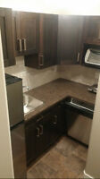 BRAND NEW BSMT APARTMENT IN BLACKFALDS - INCLUDES EVERYTHING!