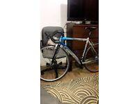 CARBON Orbea Asphalt Road Bike | Specialized Allez Carrera Cannondale Giant Trek Pinnacle