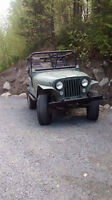 Buggy off road!
